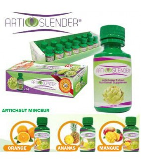 Arti Slender Fruit - 14 Flacons 60ml